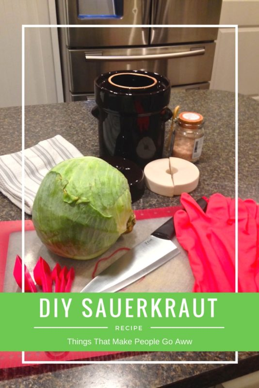 Diy Sauerkraut With A Fermentation Crock Things That